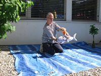 Morski pes, prijatelj Markov, v soju toplih sončnih žarkov ponese Marka čez valove med prijatelje njegove.